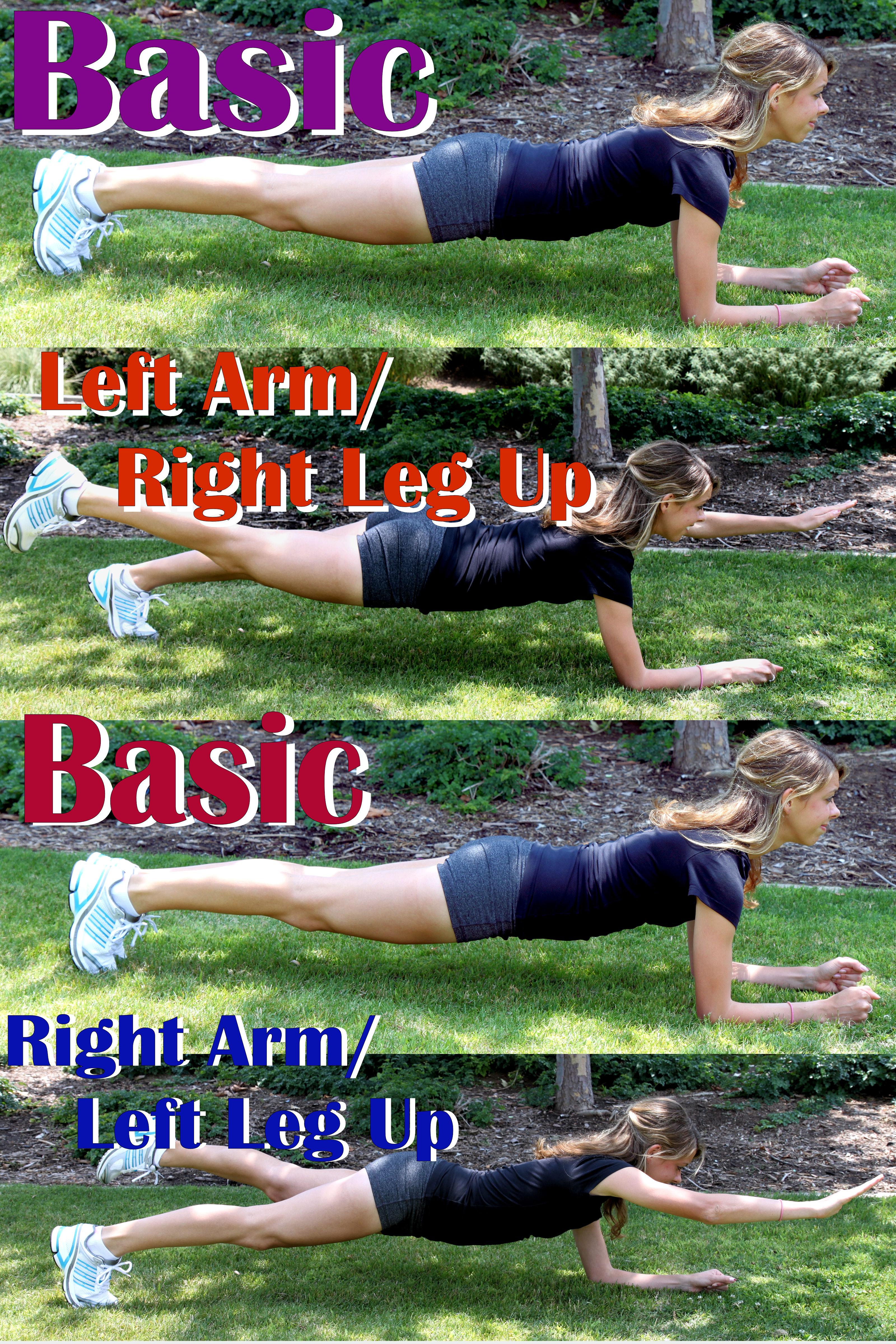 Opposite Arm Leg Raise Plank
