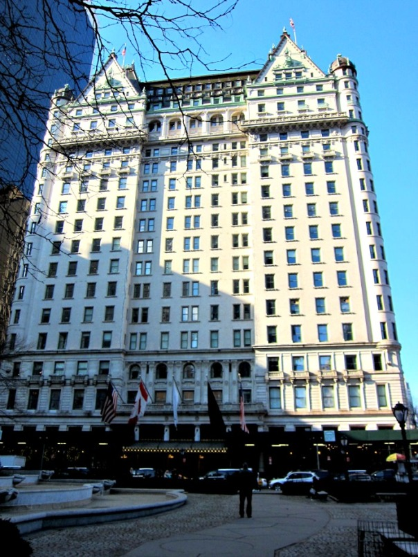 the Plaza Hotel (stronglikemycoffee.com)