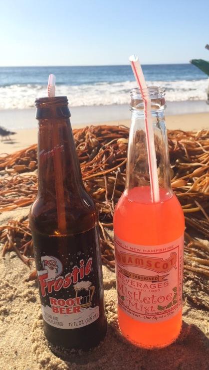 Christmas Beach Day Soda Pops