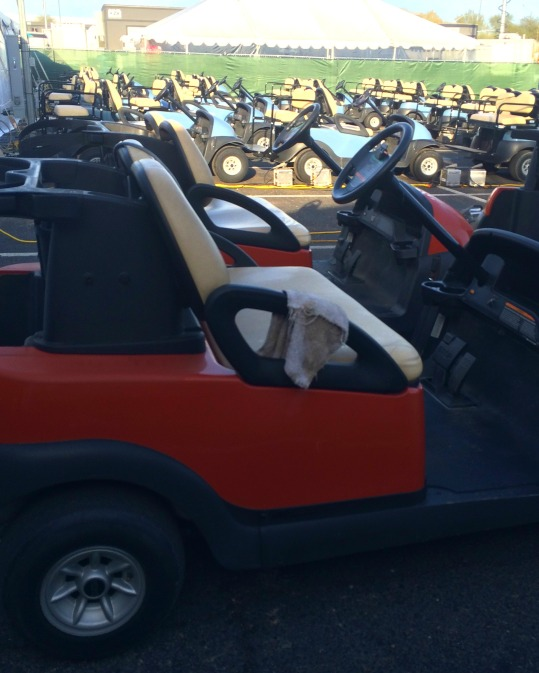 Phoenix Open Golf Carts (Stronglikemycoffee@hotmail.com)