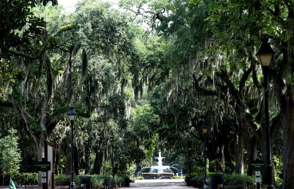 Savannah GA Forsyth Park Fountain (Stronglikemycoffee.com)