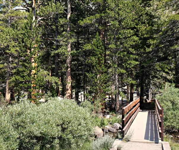 Mammoth Lakes Running Blog Post | Stronglikemycoffee.com