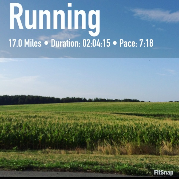 Marathon Training Long Run 17 miler | Stronglikemycoffee.com