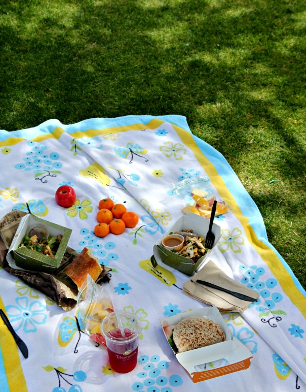 Picnic Lunch  New Blog Post  Stronglikemycoffee.com