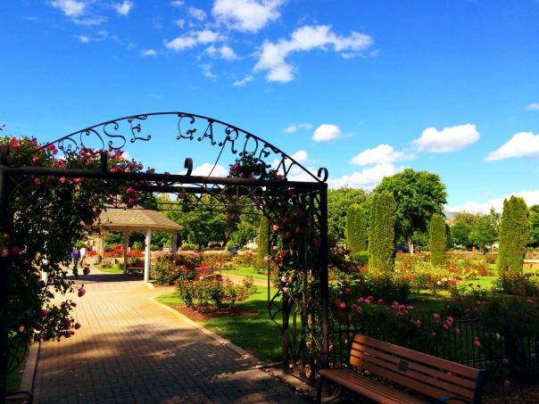 Rose Garden Boise Stronglikemycoffee.com