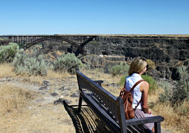Shoshone Falls Perine Bridge Idaho Stronglikemycoffee.com