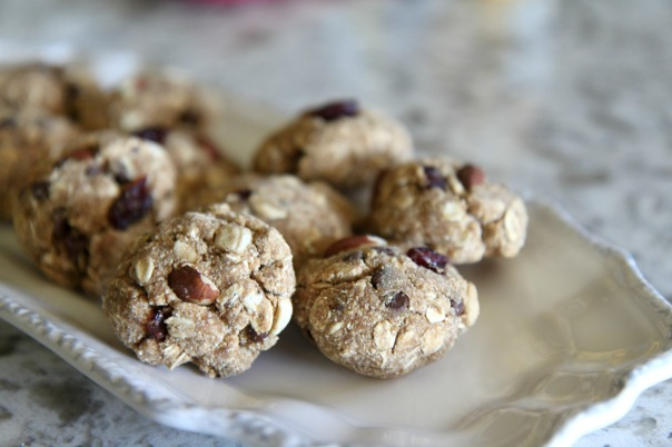 PBFit Oatmeal Trail Mix Cookies Recipe Stronglikemycoffee.com