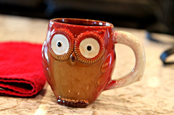owl-coffee-mug-new-blog-post-stronglikemycoffee-com