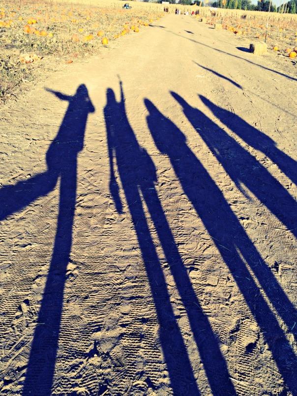 farmstead-shadows-stronglikemycoffee-com